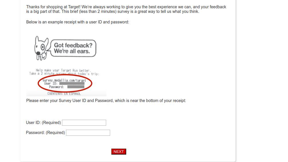 target customer survey