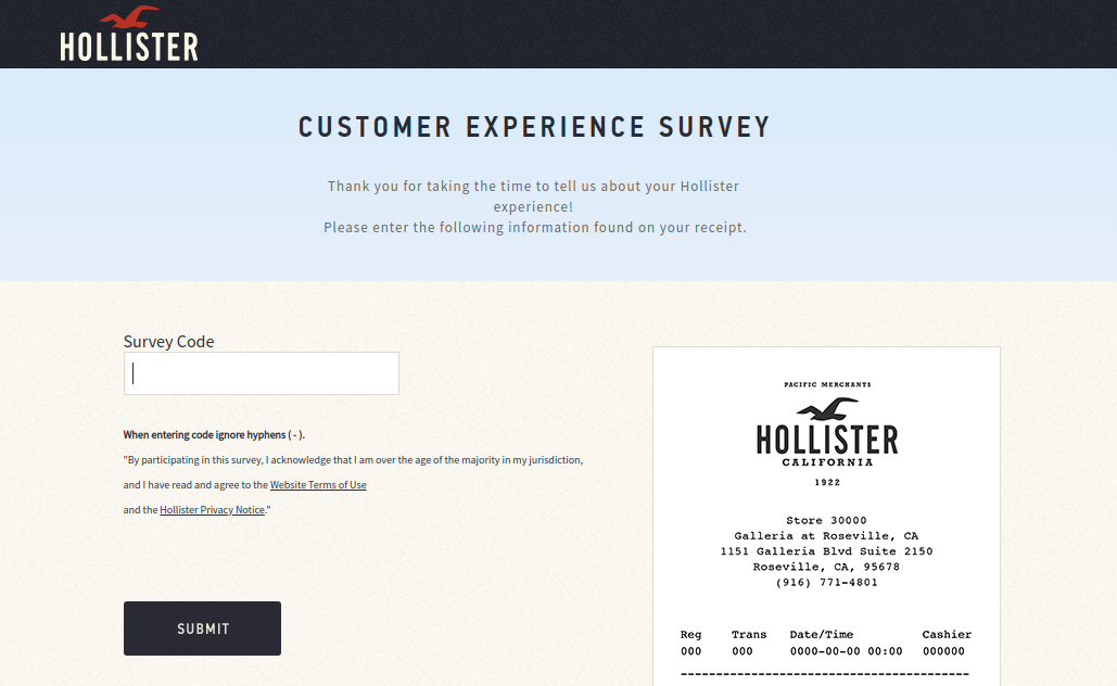 Hollister and Co Survey