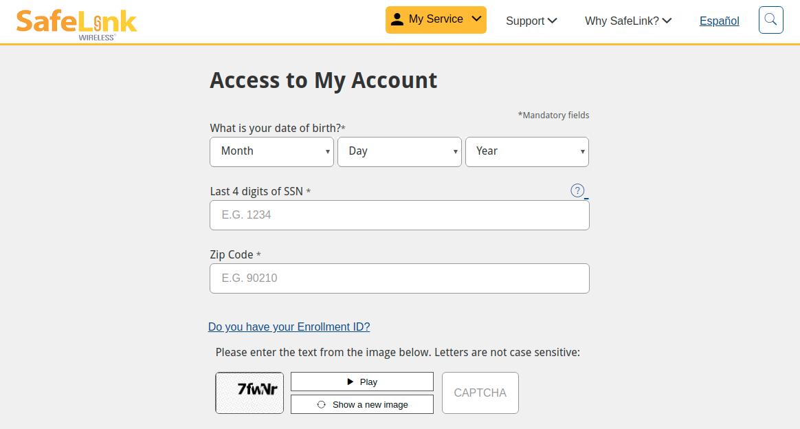 SafeLink Wireless Account Detail