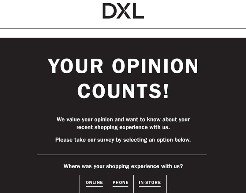 Destination XL Survey